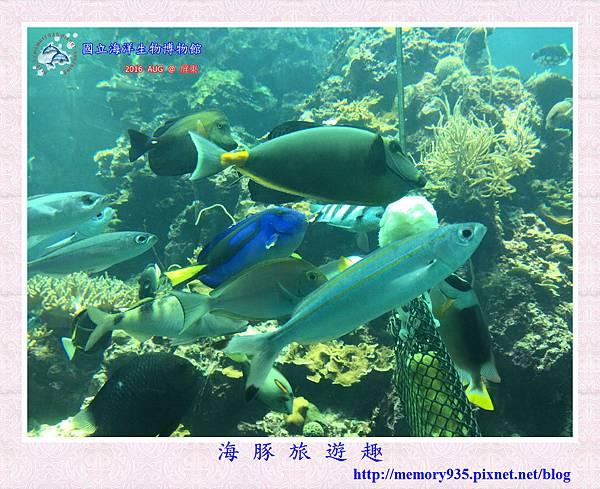 屏東。海洋生物博物館 (7).jpg