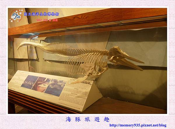屏東。海洋生物博物館 (9).jpg