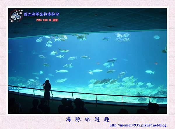 屏東。海洋生物博物館 (15).jpg
