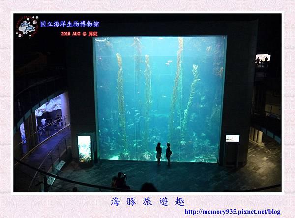 屏東。海洋生物博物館 (20).jpg