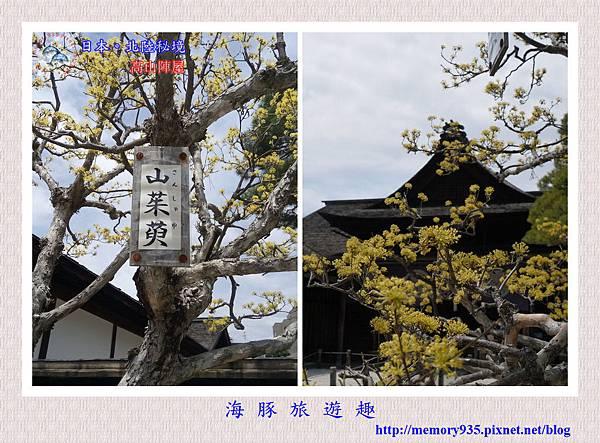 高山陣屋 (22).jpg