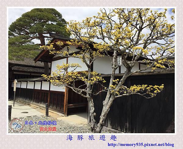 高山陣屋 (23).jpg
