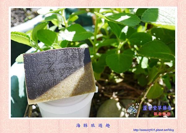 NO.62 蘆薈紫草藥皂 (1).jpg
