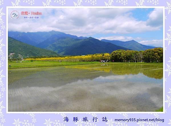 瑞穗。興泉圳 (1).jpg