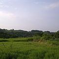 20100502123.jpg