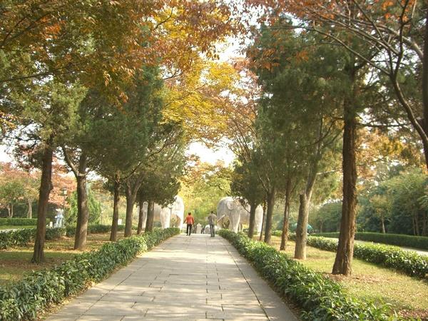梅花谷公園1.JPG