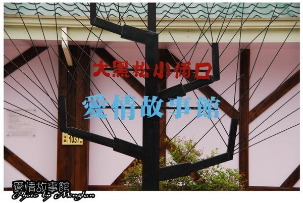 DSC_0372-2.jpg