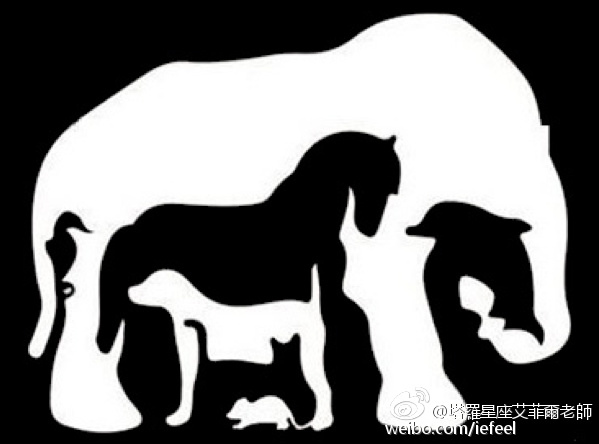 你最先看到哪种动物?测出你的天赋与脾气个性