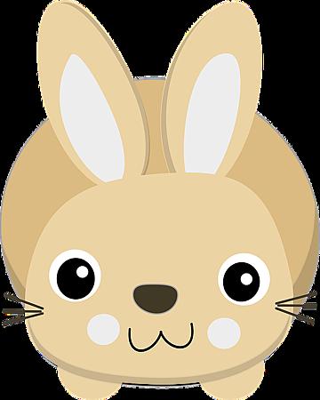 2018兔