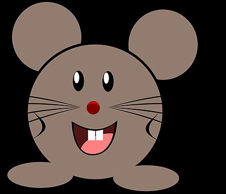 2018鼠