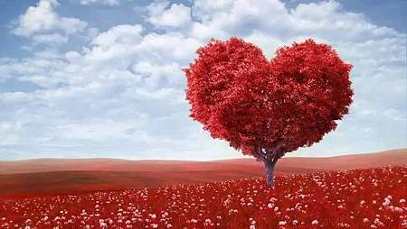 你渴望爱情的指数有多高?