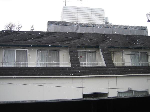 真的下雪了耶!