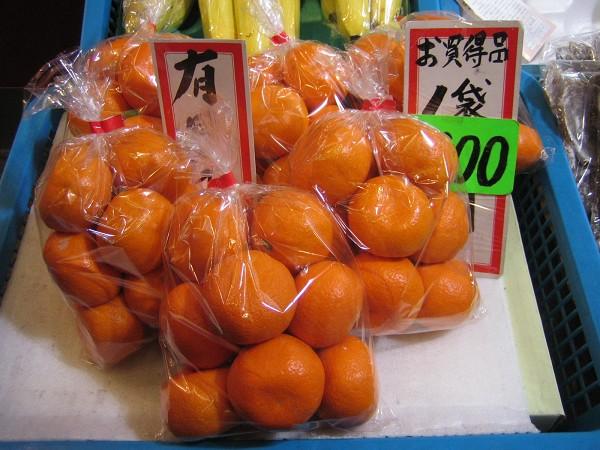 可愛的小橘子