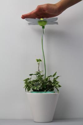 愛綠生活-時尚植物燈 未感光.jpg