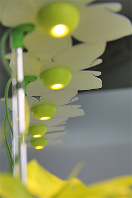 植物燈板-智慧型 LED.jpg
