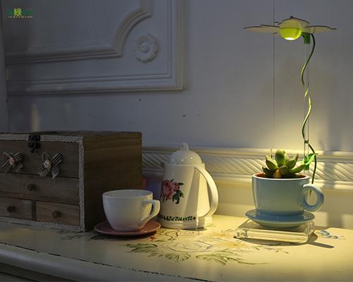 愛綠生活-時尚植物燈