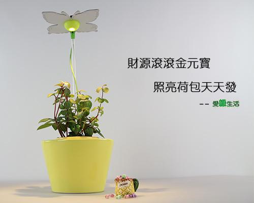 時尚植物燈 智慧型元寶型花器8