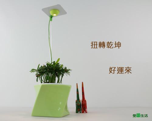 時尚植物燈 扭轉型花器7