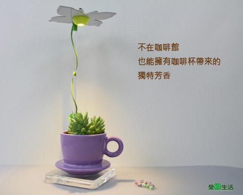 愛綠生活時尚植物燈-智慧型咖啡杯款