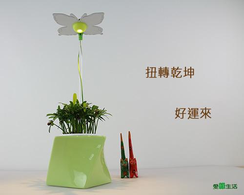 時尚植物燈 智慧 扭轉型花器7