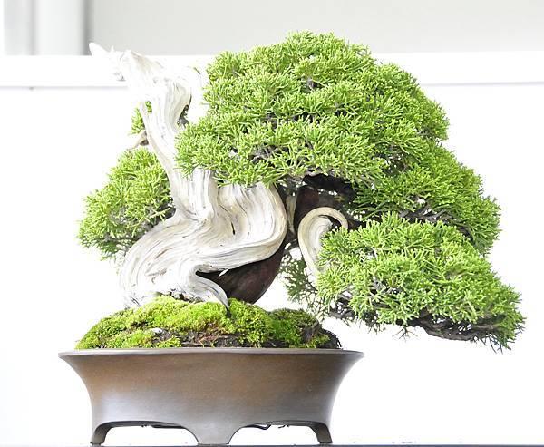 2015漢風展_0054.jpg