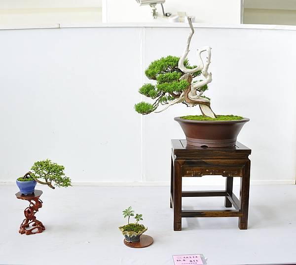 2015漢風展_0069.jpg