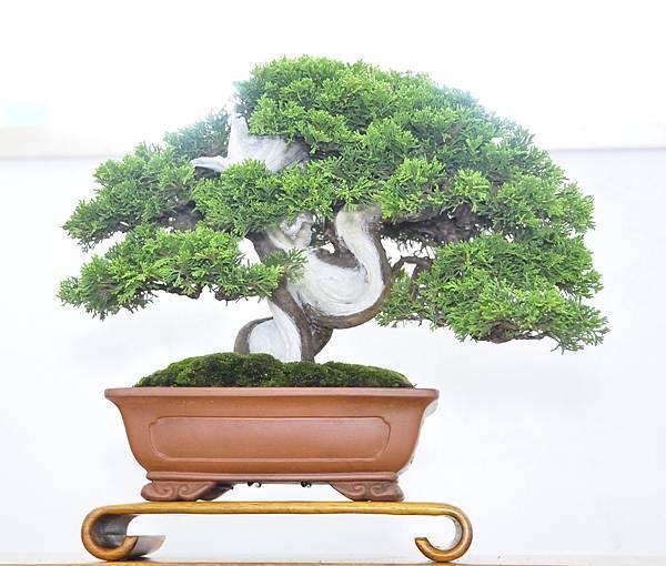 2015漢風展_0093.jpg