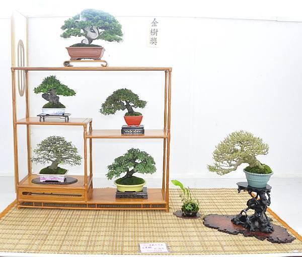 2015漢風展_0091.jpg