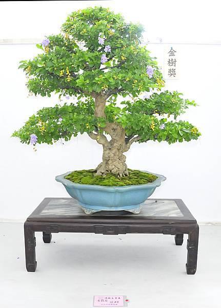 2015漢風展_0112.jpg