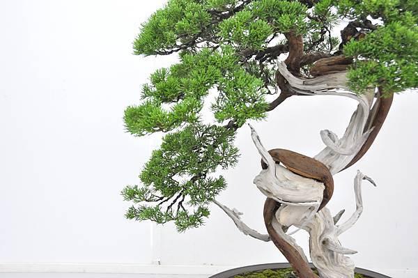 2015漢風展_0149.jpg