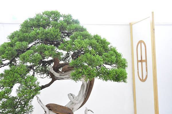 2015漢風展_0148.jpg