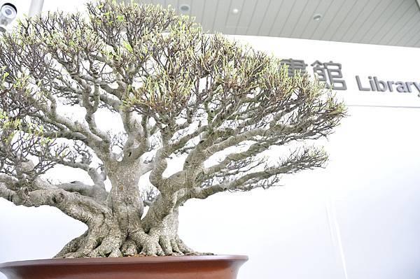 2015漢風展_0205.jpg