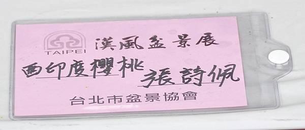 2015漢風展_0223.jpg