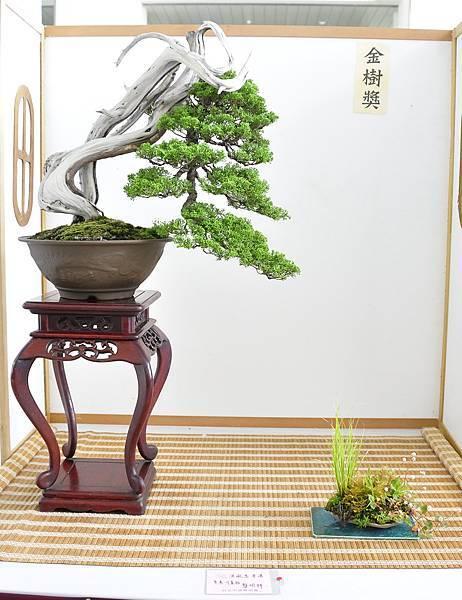 2015漢風展_0227.jpg