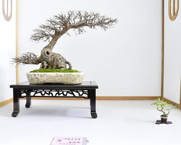 2015漢風展_0234.jpg