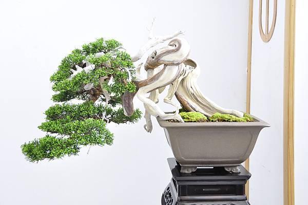 2015漢風展_0240.jpg