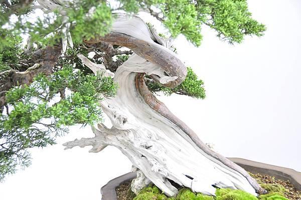 2015漢風展_0258.jpg