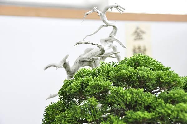 2015漢風展_0261.jpg