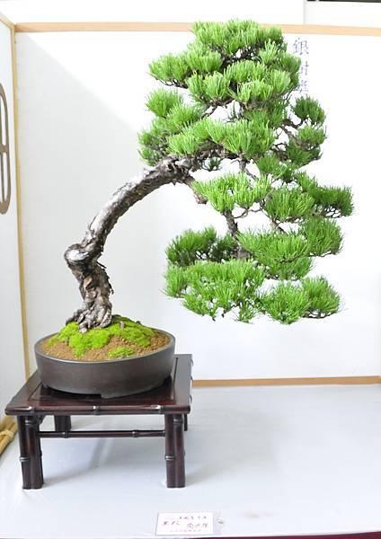 2015漢風展_0271.jpg