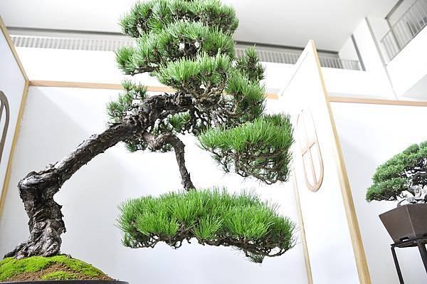 2015漢風展_0279.jpg