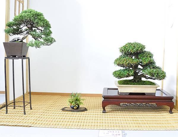 2015漢風展_0285.jpg