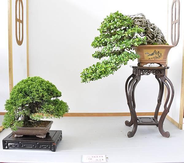 2015漢風展_0299.jpg
