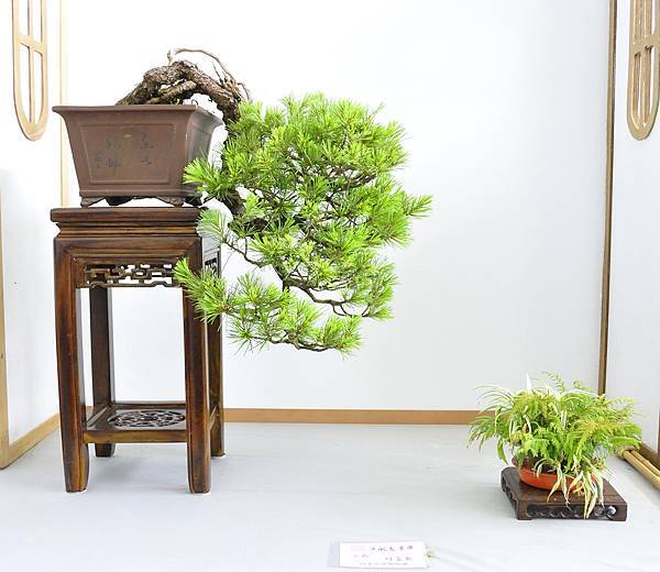 2015漢風展_0304.jpg