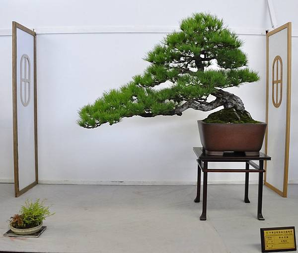 2015華風展0184.jpg