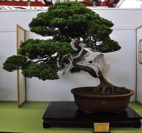 2015華風展0205.jpg