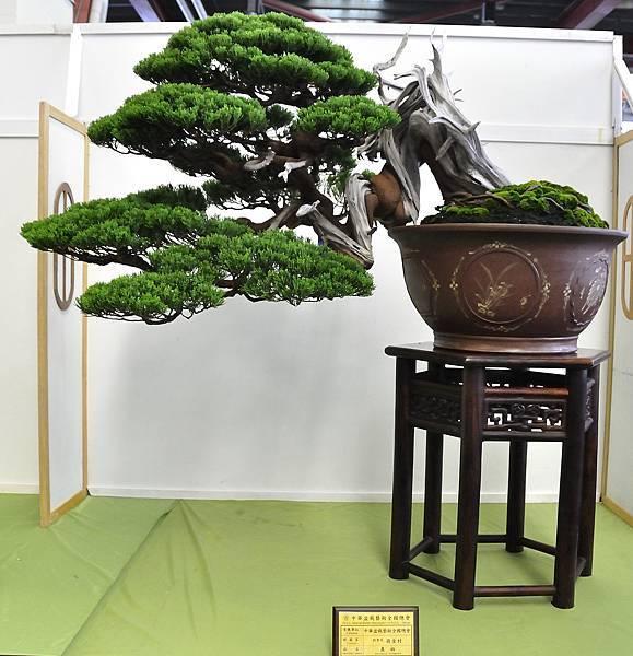 2015華風展0228.jpg