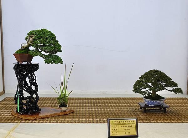 2015華風展0521.jpg