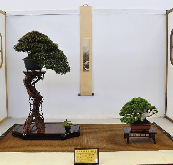 2015華風展0739.jpg