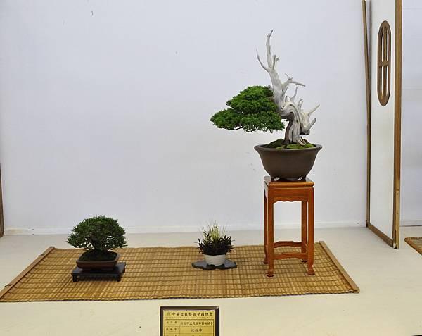 2015華風展0750.jpg
