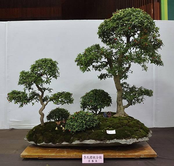 2015台灣花菓盆栽展0031.jpg
